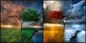 Le stagioni della vita. Laboratorio di scrittura autobiografica